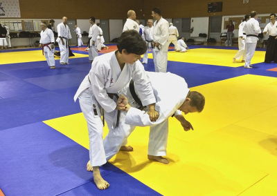 2015-10-11 - stage européen arts martiaux fekamt - principes de combat ma ai de toma à chikama (toutes disciplines) - gien (45) - guy, béatriz et laurent [kcg]