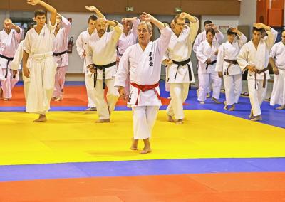 2015-10-11 stage européen arts martiaux fekamt - principes de combat ma ai de toma à chikama (toutes disciplines) - gien (45) - pierre sensei et béatriz [kcg]