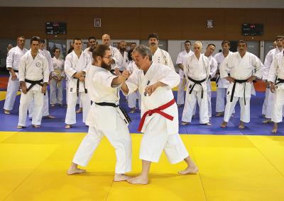 2016-11-05 stage européen arts martiaux fekamt en mémoire à gilbert gruss - experts de la fekamt - toutes disciplines (ag) - gien (45) - sandro, pierre sensei