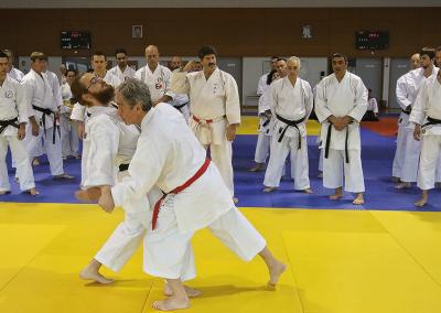 2016-11-05 - stage européen arts martiaux fekamt en mémoire à gilbert gruss - experts de la fekamt - toutes disciplines (ag) - gien (45) - sandro, pierre sensei, tina, fred [kcg]