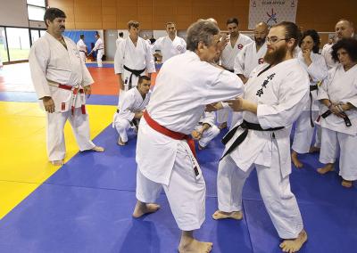 2016-11-05 - stage européen arts martiaux fekamt en mémoire à gilbert gruss - experts de la fekamt - toutes disciplines (ag) - gien (45) - pierre sensei, sandro, béatriz, tina [kcg]