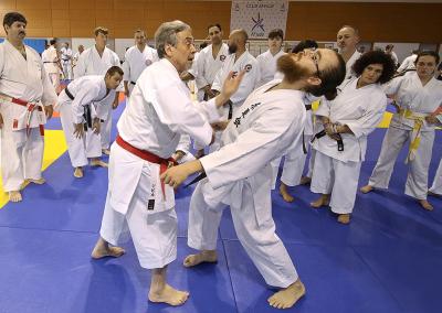2016-11-05 - stage européen arts martiaux fekamt en mémoire à gilbert gruss - experts de la fekamt - toutes disciplines (ag) - gien (45) - pierre sensei, sandro, ina [kcg]