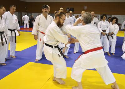 2016-11-05 - stage européen arts martiaux fekamt en mémoire à gilbert gruss - experts de la fekamt - toutes disciplines (ag) - gien (45) - sandro, pierre sensei, béatriz, tina [kcg]