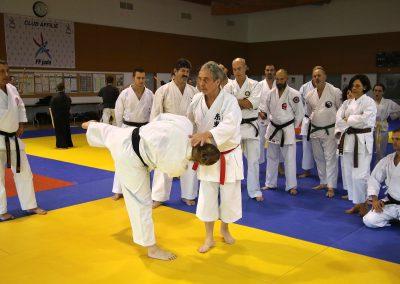 2016-11-05 - stage européen arts martiaux fekamt en mémoire à gilbert gruss - experts de la fekamt - toutes disciplines (ag)  - gien (45) -