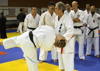 2016-11-05 stage européen arts martiaux fekamt en mémoire à gilbert  gruss - experts de la fekamt - toutes disciplines (ag) - gien (45) - sandro, pierre sensei [kcg]