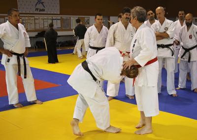 2016-11-05 - stage européen arts martiaux fekamt en mémoire à gilbert  gruss - experts de la fekamt - toutes disciplines (ag) - gien (45) - sandro, pierre sensei [kcg]
