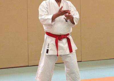 2017-03-25 - stage karate fekamt no kachi - études des kumité imposés - sensei pierre sibille et guy bigot 8°dan fekamt - lyon (69)-sensei pierre-