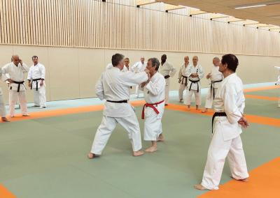 2017-03-25 - stage karate fekamt no kachi - études des kumité imposés - sensei pierre sibille et guy bigot 8°dan fekamt - lyon (69) - sensei pierre, jean-françois et georges