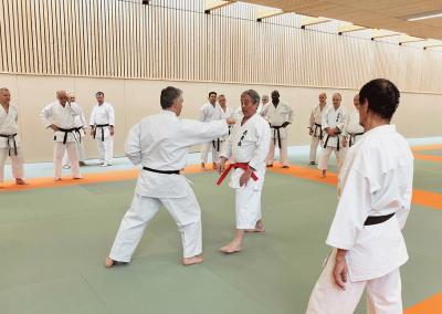 2017-03-25 - stage karate fekamt no kachi - études des kumité imposés - sensei pierre sibille et guy bigot 8°dan fekamt - lyon (69) - sensei pierre et jean-françois