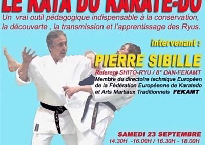 2017-09-23---stage-karate-fekamt---le-kata-du-karate-do---sensei-pierre-sibille-8°dan-fekamt---shitokai-karatedo-malonne-(5020)-belgique---0796---[affiche]--